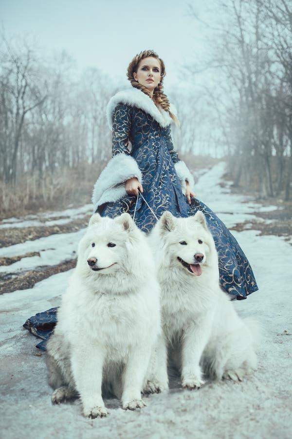 A mulher na caminhada do inverno com um cão imagens de stock royalty free