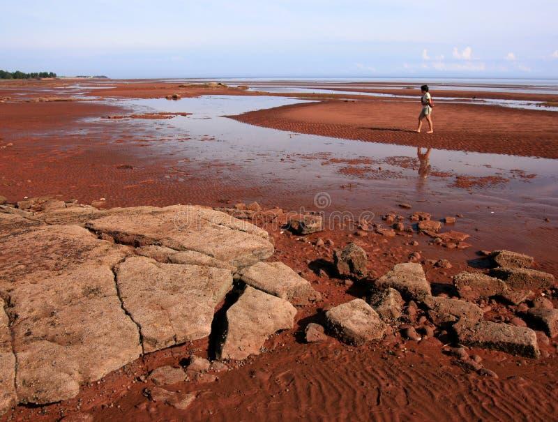 Mulher na costa de Argyle imagem de stock royalty free