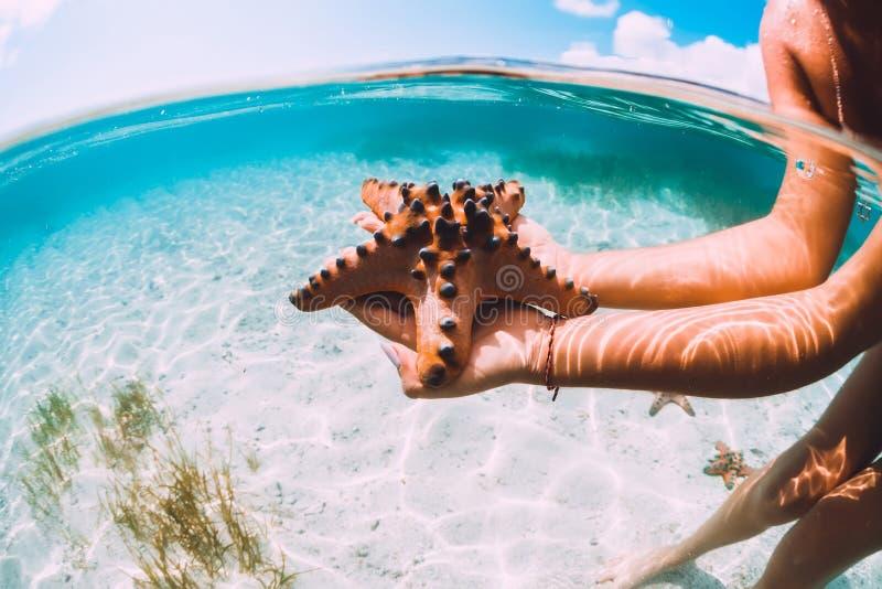 Mulher na estrela do mar tropical da terra arrendada do oceano, foto subaquática fotografia de stock royalty free