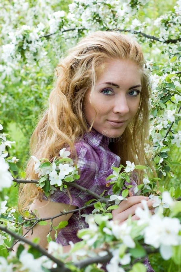 Mulher na flor da árvore de cereja foto de stock