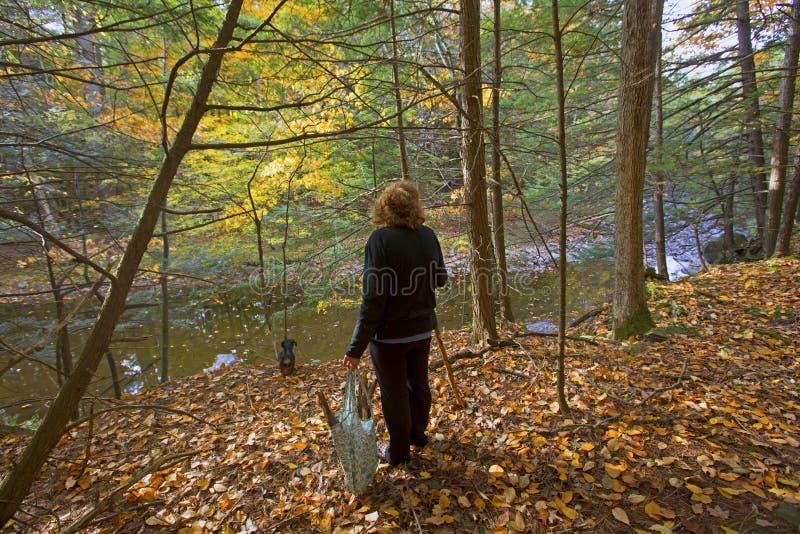 Mulher na floresta fotografia de stock