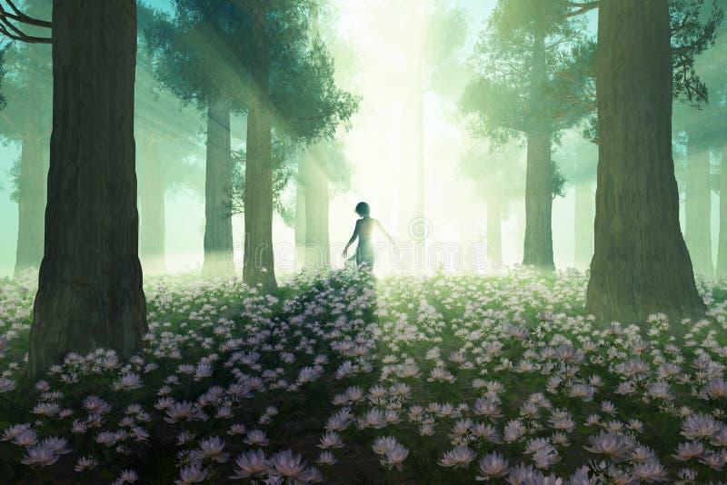 Mulher na floresta da manhã ilustração stock