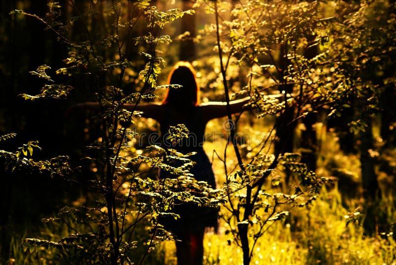 Mulher na floresta no por do sol