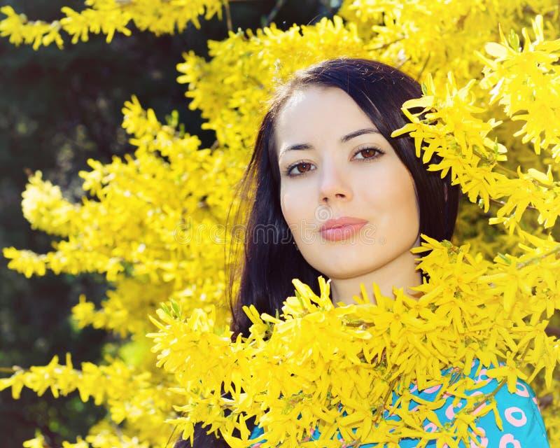 Mulher na forsítia amarela imagens de stock