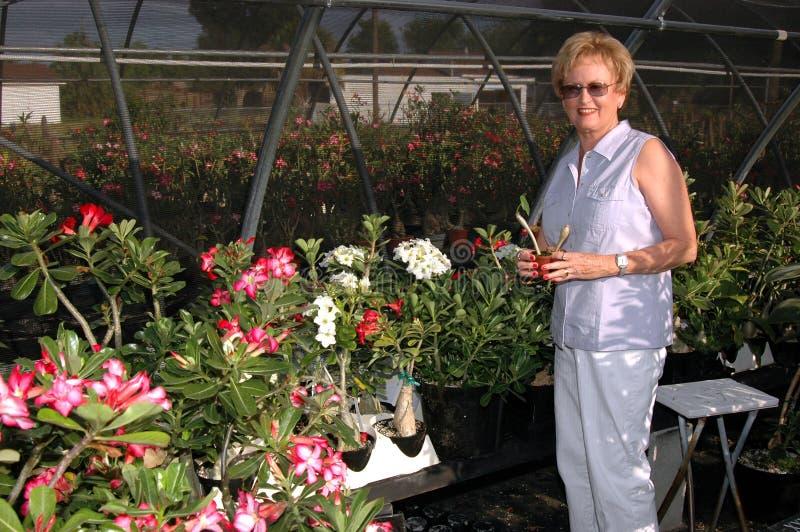Mulher na loja do jardim imagem de stock
