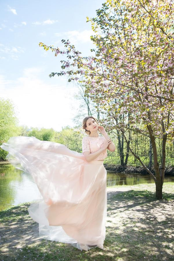 Mulher na mola no parque Fundo da flor de Sakura fotos de stock royalty free