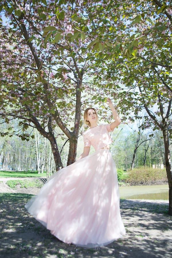 Mulher na mola no parque Fundo da flor de Sakura fotografia de stock
