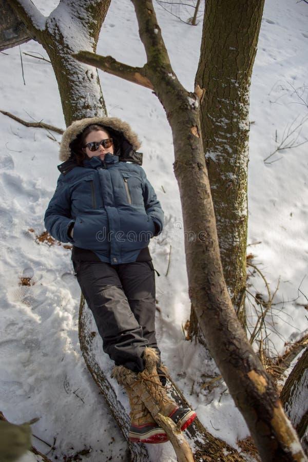 Mulher na paisagem nevado que coloca no ramo imagem de stock