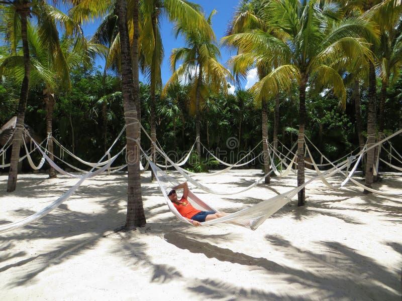 Mulher na rede na areia branca - palmeiras - praia tropical fotografia de stock royalty free