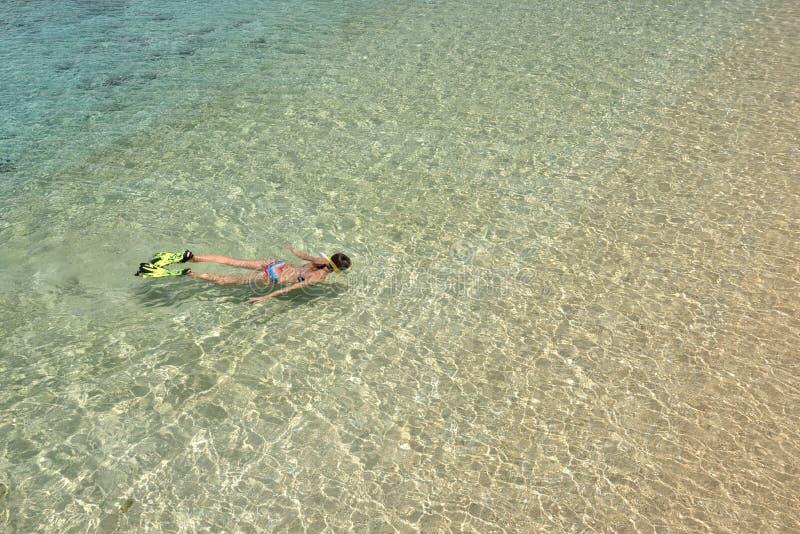 A mulher no biquini está nadando com tubo de respiração e aletas na agua potável imagens de stock