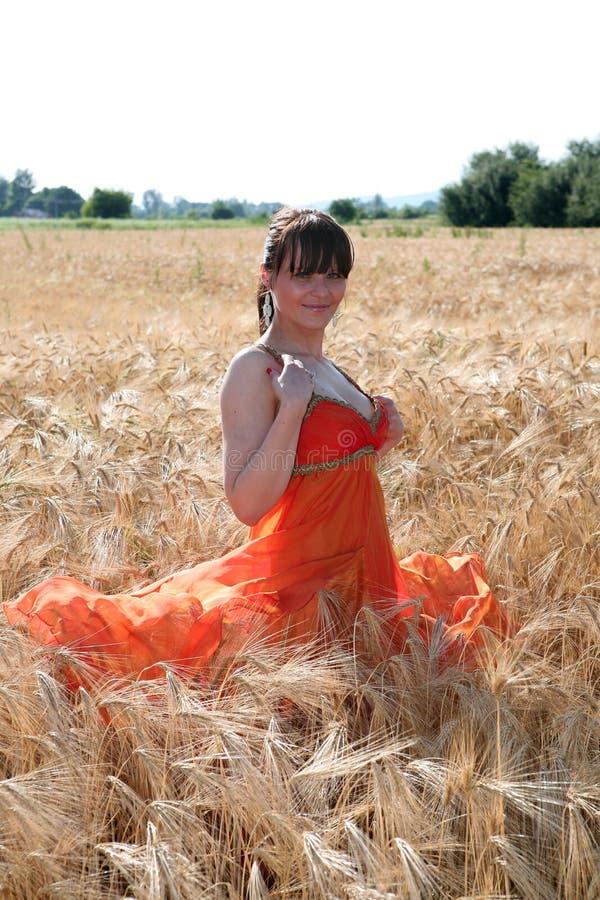 Mulher no campo da colheita fotos de stock royalty free