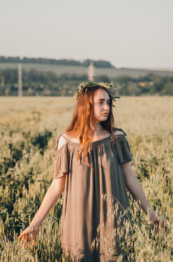 Mulher no campo de trigo imagem de stock