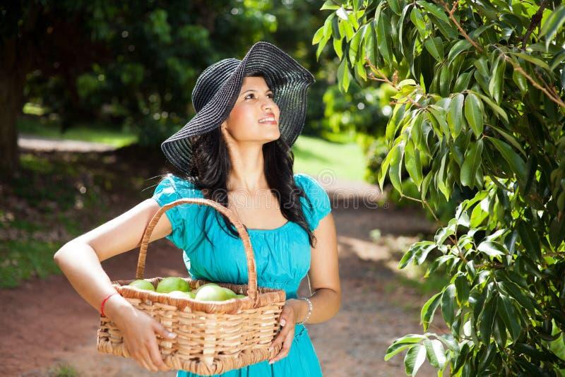 Mulher no jardim da fruta fotografia de stock royalty free