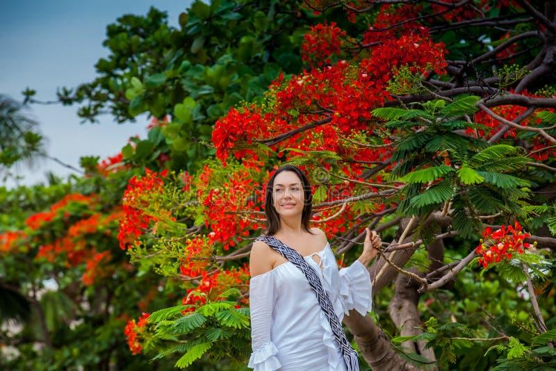 Mulher no vestido branco ao lado de uma árvore florescida bonita nas paredes que cercam a cidade colonial de Cartagena de Índia fotos de stock
