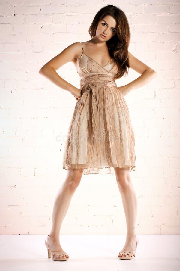 Mulher no vestido do laço imagem de stock