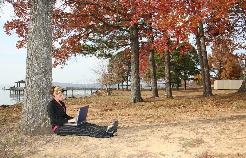 Mulher nova bonita no parque com portátil