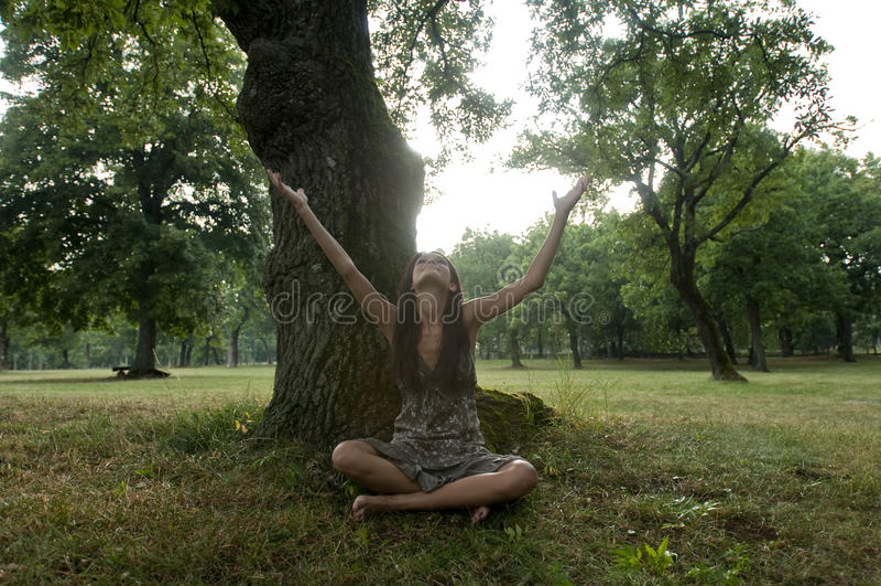 Download A Mulher Nova Bonita Senta-se Sob Uma árvore Foto de Stock - Imagem de braços, braço: 12413480