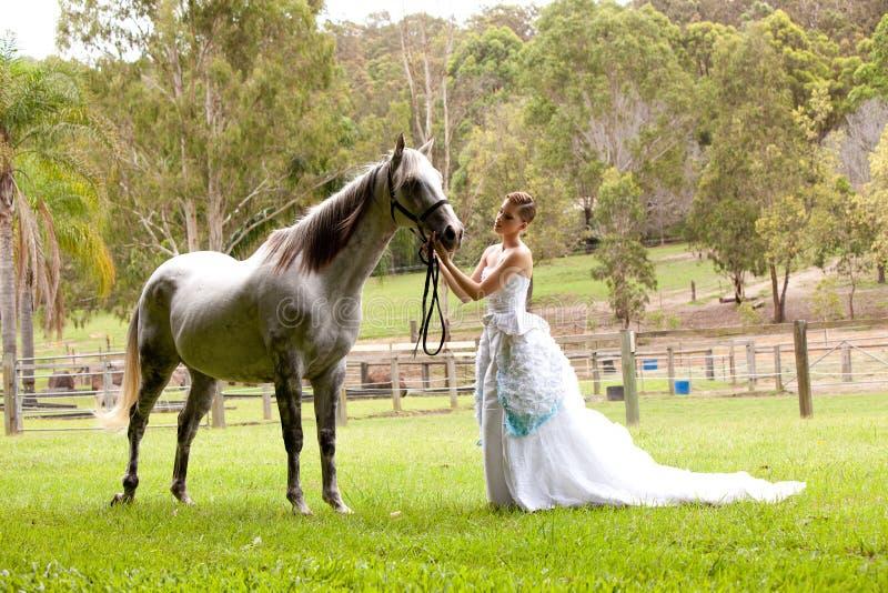 Mulher nova com cavalo branco imagem de stock