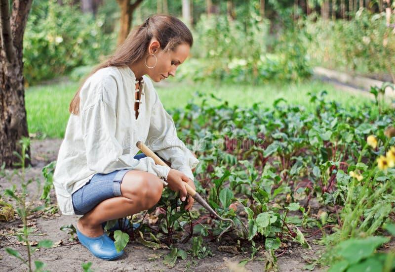 Mulher nova com o hoe que trabalha no jardim fotografia de stock