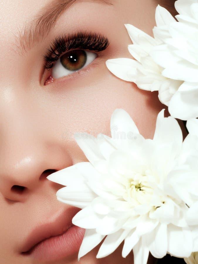 Mulher nova da beleza com composição do close up das flores Cosm?ticos e composi??o Tiro macro do close up da cara da forma foto de stock royalty free