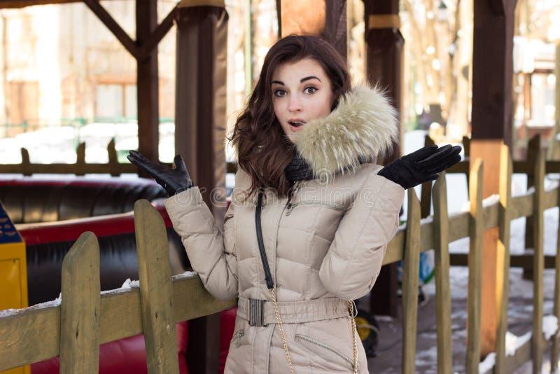 Mulher nova da beleza no parque do inverno imagem de stock royalty free