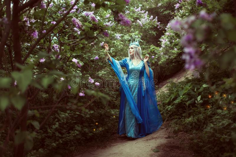 A mulher nova do duende anda em uma floresta feericamente imagem de stock