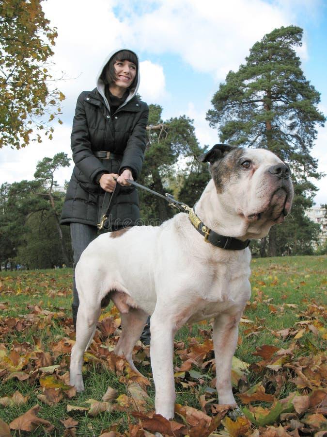 Mulher nova e cão forte fotografia de stock royalty free