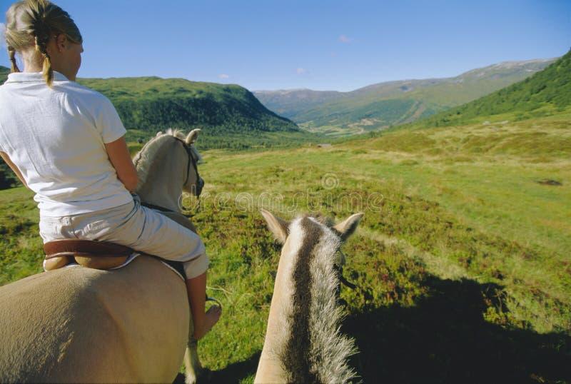 Mulher nova e dois cavalos fotografia de stock