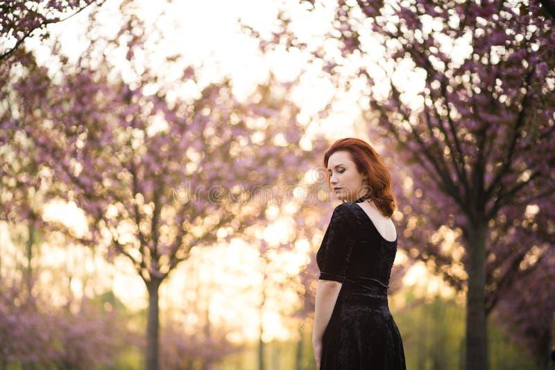 Mulher nova feliz do dan?arino do curso que aprecia o tempo livre em um parque da flor de cerejeira de sakura - menina branca cau foto de stock
