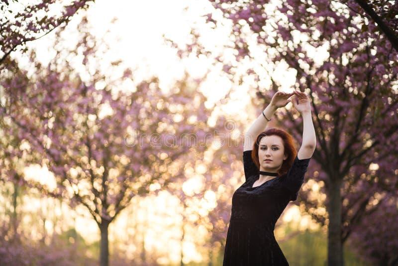 Mulher nova feliz do dan?arino do curso que aprecia o tempo livre em um parque da flor de cerejeira de sakura - menina branca cau imagem de stock