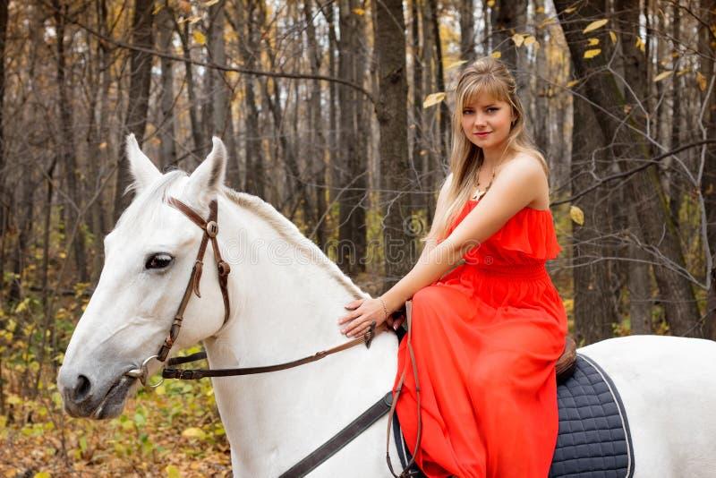 Mulher nova fina no horseback no cavalo branco imagem de stock