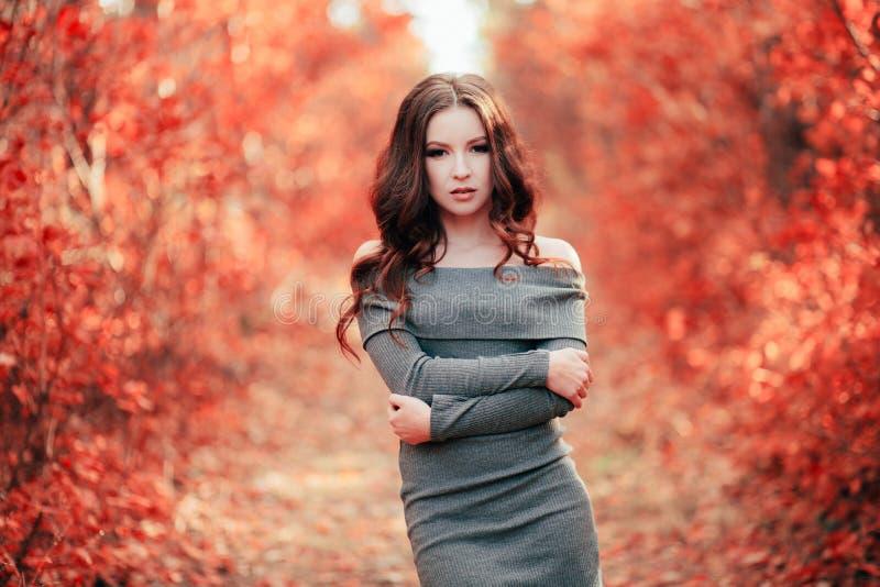 Mulher nova no vestido cinzento fotografia de stock