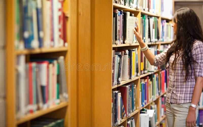 Mulher nova que escolhe um livro foto de stock royalty free