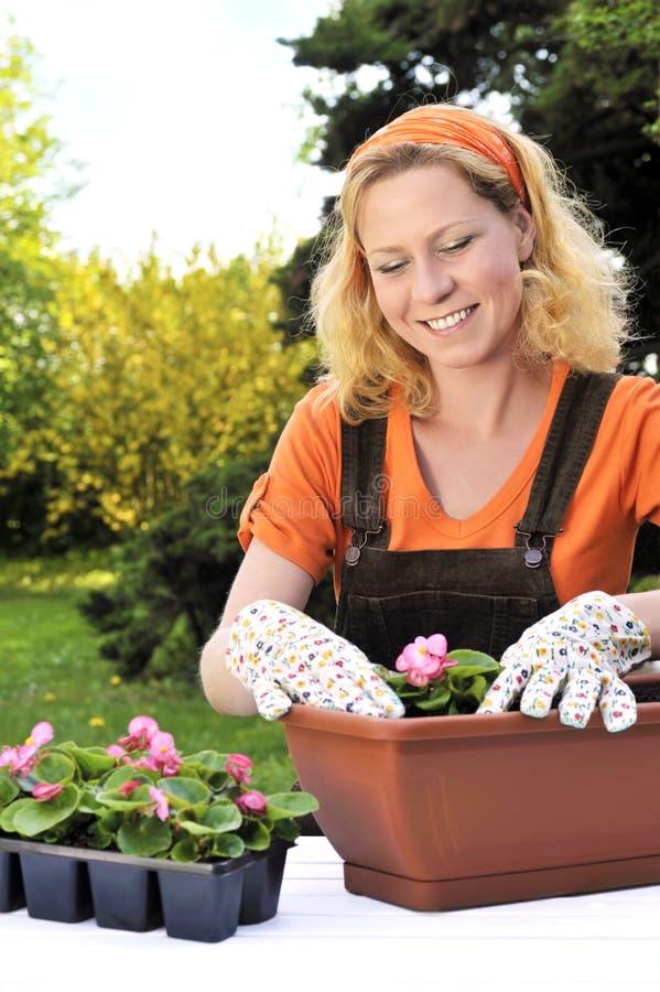 Mulher nova que jardina - plantando flores imagens de stock royalty free