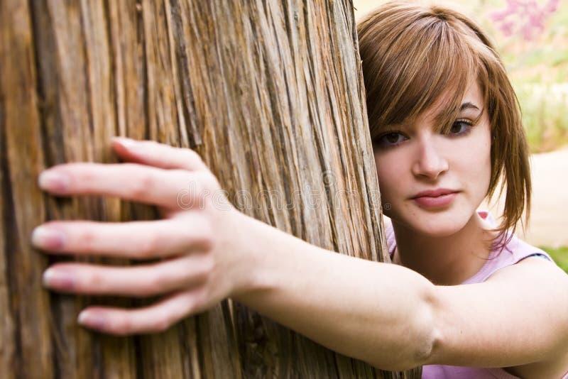 Mulher nova que prende uma árvore foto de stock royalty free