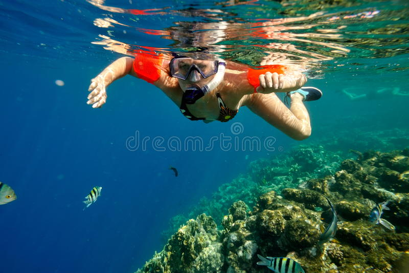 Mulher nova que snorkeling foto de stock