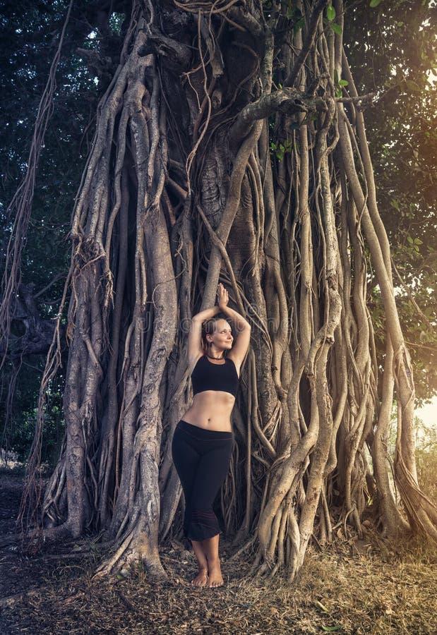 Mulher perto da árvore de banyan imagem de stock royalty free