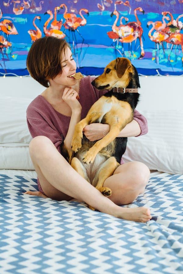 Mulher positiva nova que joga com o cão de estimação em casa interior Biscoito guardando fêmea engraçado na boca e em abraçar seu imagem de stock
