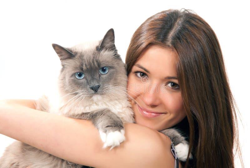 A mulher prende seu gato encantador de Ragdoll com olhos azuis foto de stock