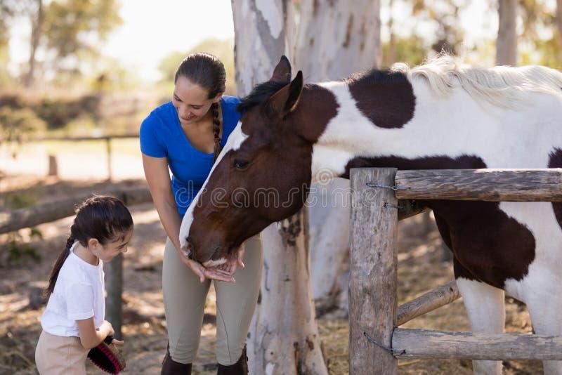 Mulher que ajuda à irmã para o cavalo de limpeza imagem de stock royalty free