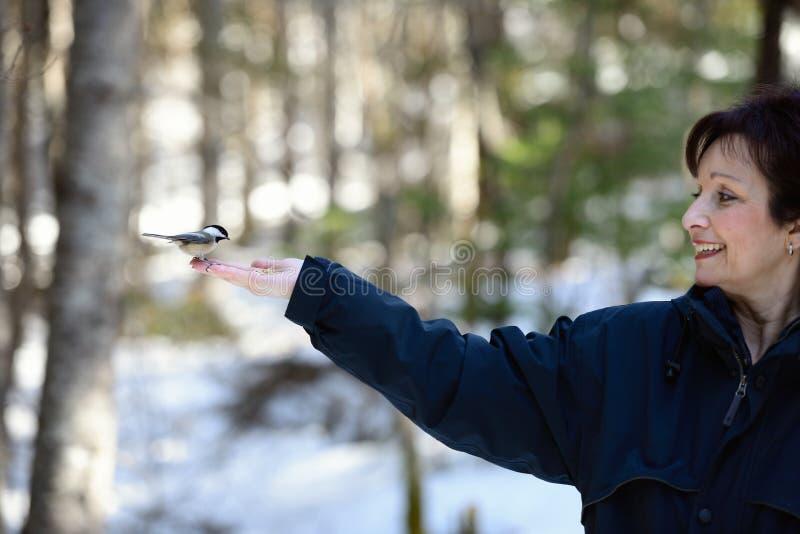 Mulher que alimenta um pássaro foto de stock