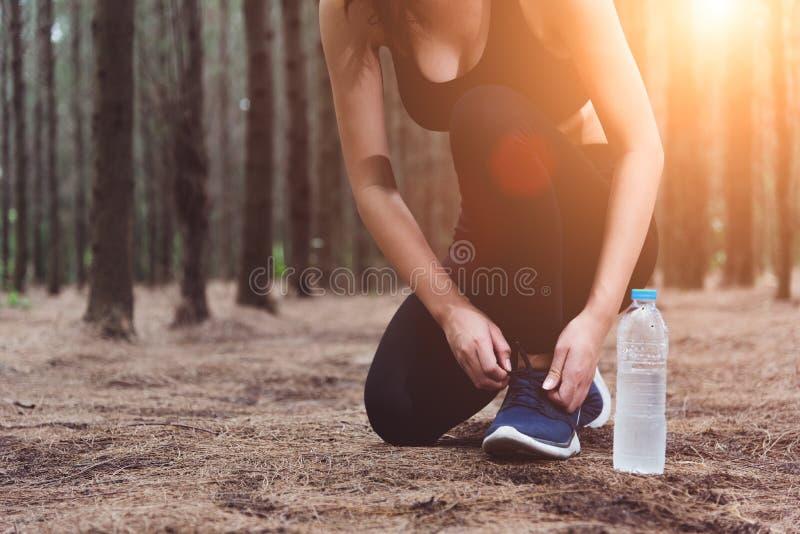 Mulher que amarra acima dos laços ao movimentar-se na floresta para trás com drinki fotos de stock