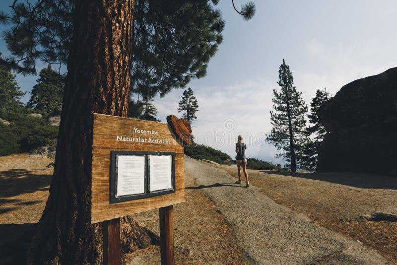 Mulher que anda acima do trajeto no parque de Yosemite foto de stock royalty free