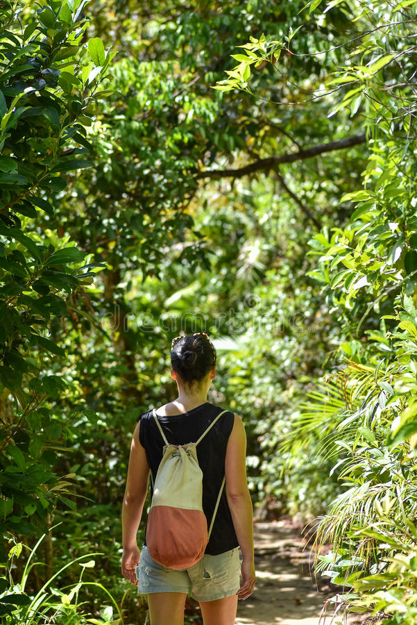 Mulher que anda ao longo de um trajeto através da selva imagem de stock royalty free