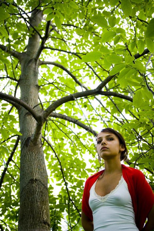 Mulher que anda na floresta imagens de stock