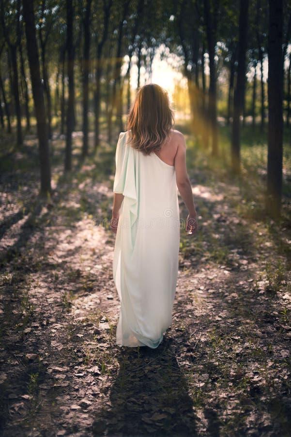 Mulher que anda na floresta imagens de stock royalty free