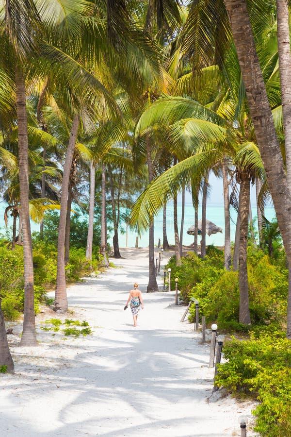 Mulher que anda na praia de Paje, Zanzibar imagens de stock