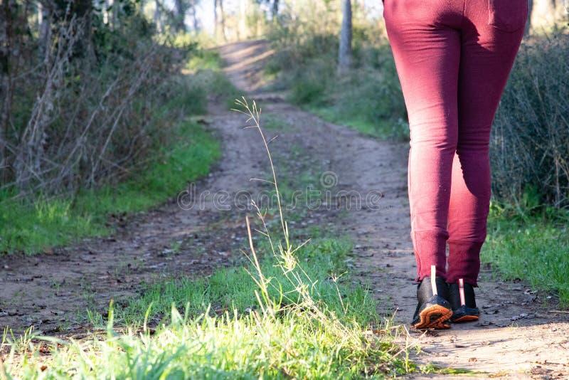 Mulher que anda na trilha fora de estrada na floresta fotos de stock royalty free
