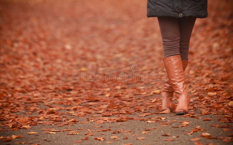 Mulher que anda nas folhas durante a queda imagens de stock