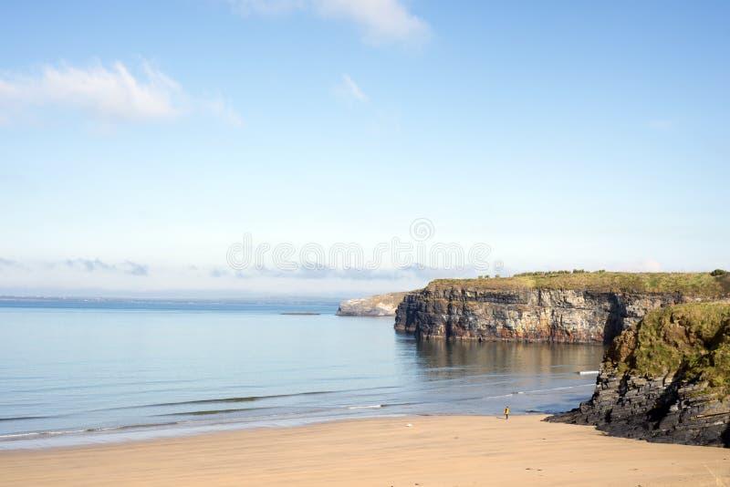 A mulher que anda um cão como ondas macias quebra na praia imagens de stock